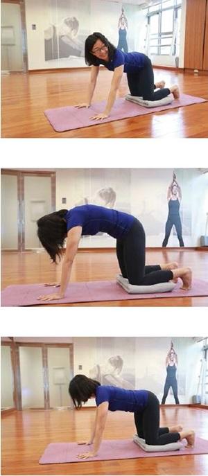 孕婦瑜伽-四足跪姿