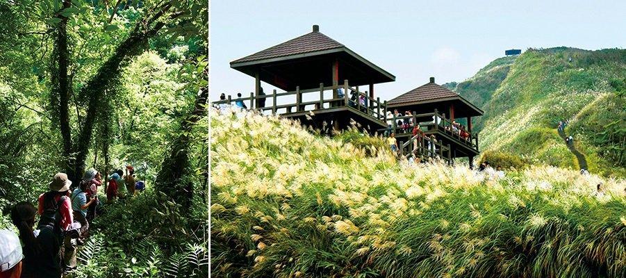 生態旅遊是開啟通往大自然的門,並藉此找回人與土地的連結。(攝影/高毓霠,圖片來源:東北角之友臉書)