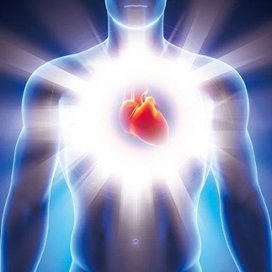 深具智慧的心臟