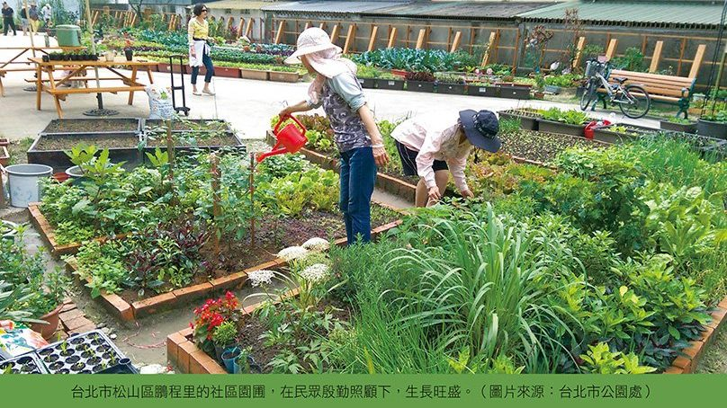 社區園圃 種出鄰里好關係