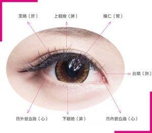 中醫「五輪學說」把眼睛分成五個部分