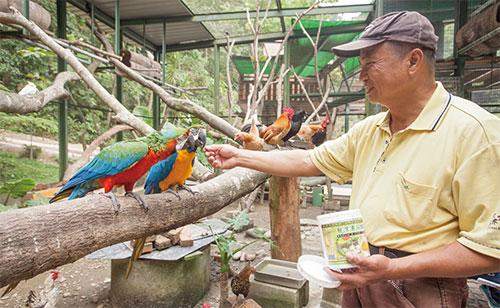 森林鳥花園飼育組長吳兆山