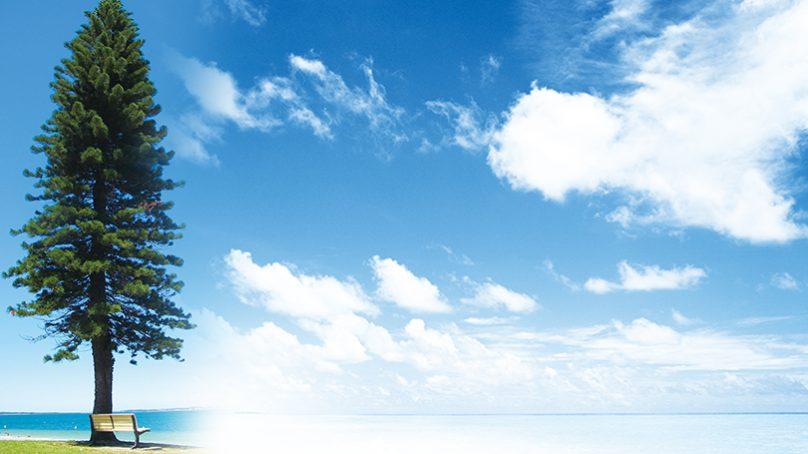 「想」是意識 「參」是智慧