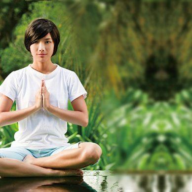 禪不是佛教的專利  是全體眾生的權利